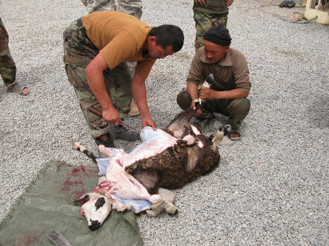 Pulitzer Center Afghanistan Skinning the goat